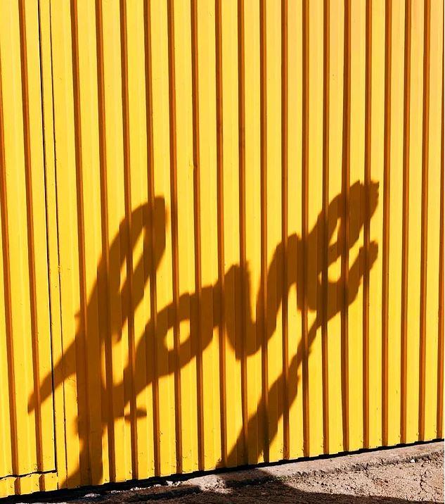 canlı sarı pantone rengi