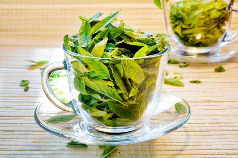 avokado çayı güçlü bir antioksidandır