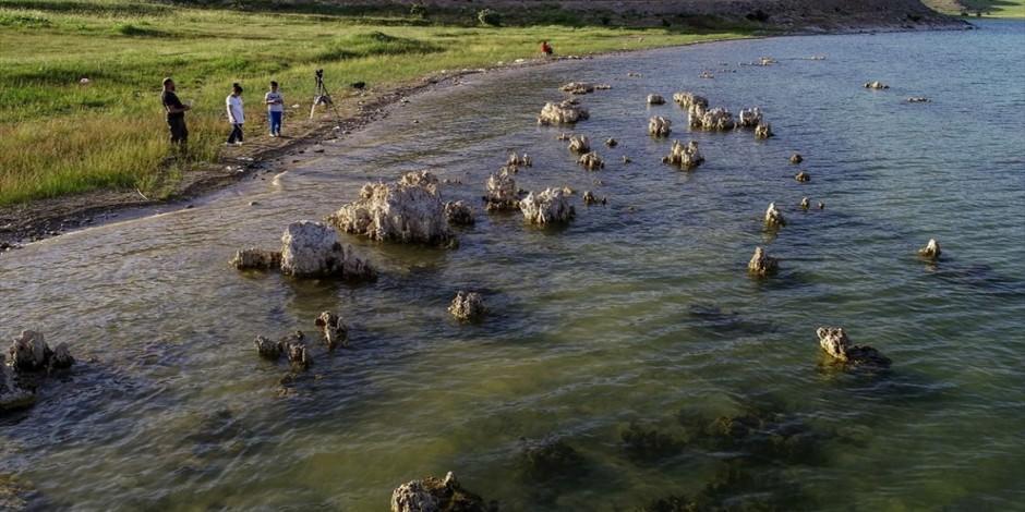 Sular çekildi, binlerce yıllık mikrobiyalitler ortaya çıktı