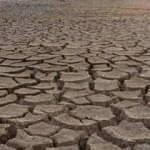 Sigortası olmayan çiftçilere kuraklık desteği verilecek