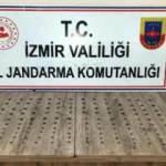 139 tarihi gümüş sikke ile yakalanan 5 kişiye gözaltı