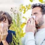 Saman nezlesi hastalığında yeni tedavi yöntemi!
