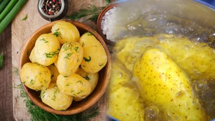 Patates nasıl haşlanır? Patates haşlamanın püf noktaları