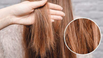 Oryalden yanan saçlara ne yapılır? İşlem görmüş saçların bakımı nasıl olmalıdır?