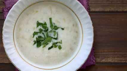Pırasa çorbası nasıl yapılır? En kolay pırasa çorbasının püf noktaları