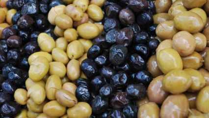 Sahte zeytin nasıl anlaşılır? Zeytin siyah rengi nasıl alır? Zeytini karartmak için...