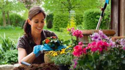 Bahçe temizliği nasıl yapılır? Bahçe temizliği ve düzeni için öneriler!