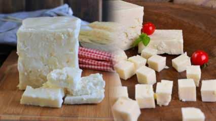 Ezine peyniri nedir ve nasıl anlaşılır? Ezine peyniri tarifi
