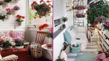 Bahar ayları için balkon dekorasyonu önerileri! Bahar ayı çiçekleri isimleri