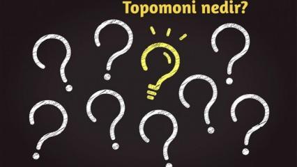 Topomoni nedir, neyi inceler? Topomoni biliminin sağladığı faydalar nelerdir?