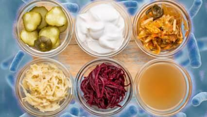 Probiyotik nedir ve ne işe yarar? Probiyotikler hangi besinlerde bulunur?